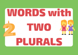 words with two plurals italian