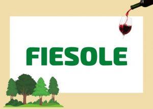 FIESOLE: il sobborgo in Toscana ricco di Storia, Cibo e Viste Panoramiche di Firenze